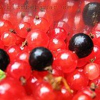 Rödavinbärssaft